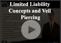 Limited Veil Piercing