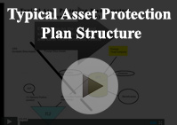 Typical asset protection Structure